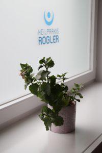 Blume Heilpraxis Rogler